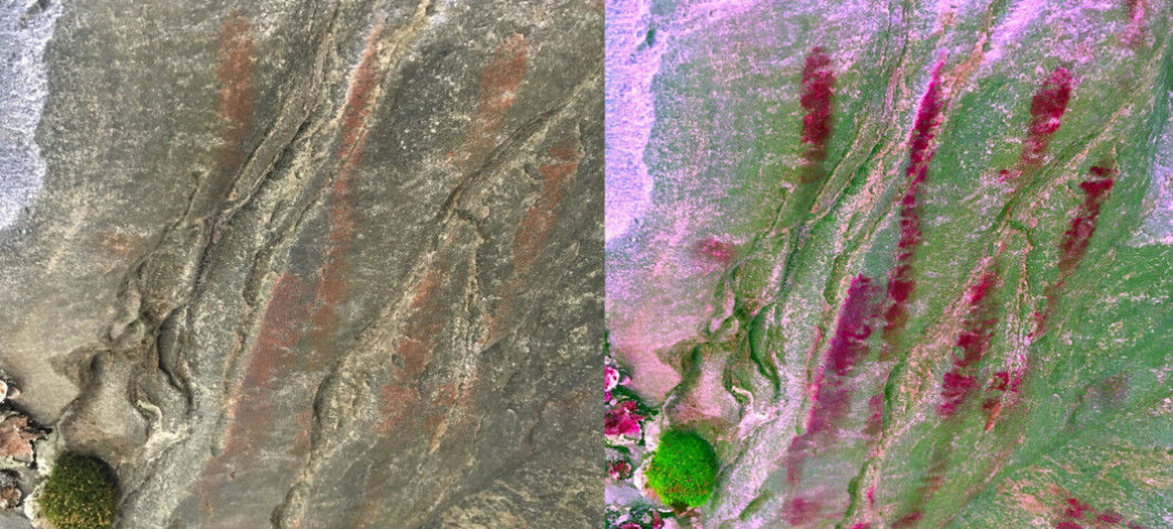 Stone age handprint found in Norway's northernmost county