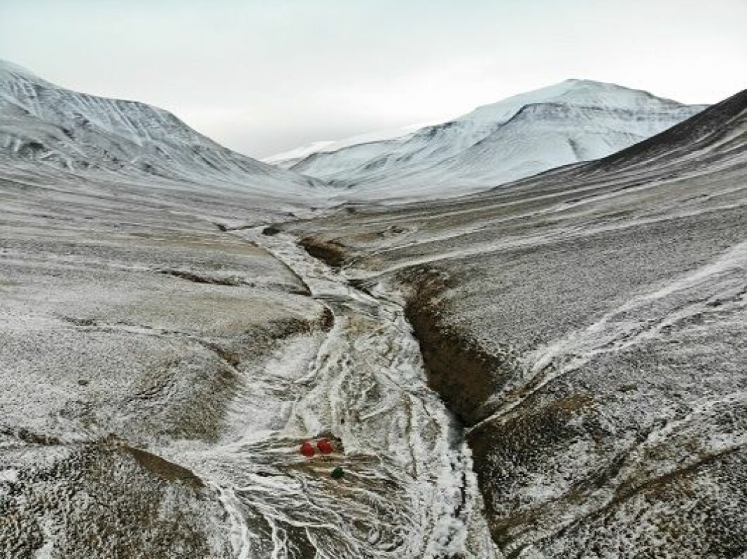 The greatest mass extinction of life on Earth happened 250 million years ago. Deltadalen, a valley on Svalbard, provides researchers important clues as to what actually happened.