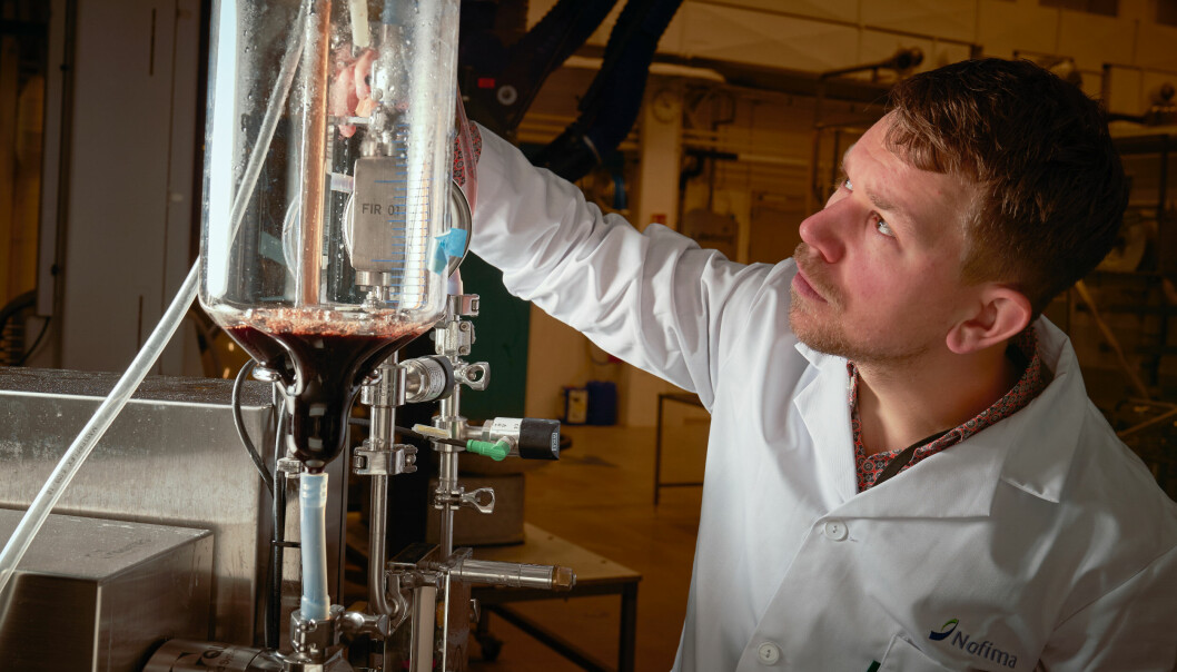 Runar Gjerp Solstad is one of the researchers who have worked meticulously to develop a process for transforming blood to powder which can be used in iron supplements.