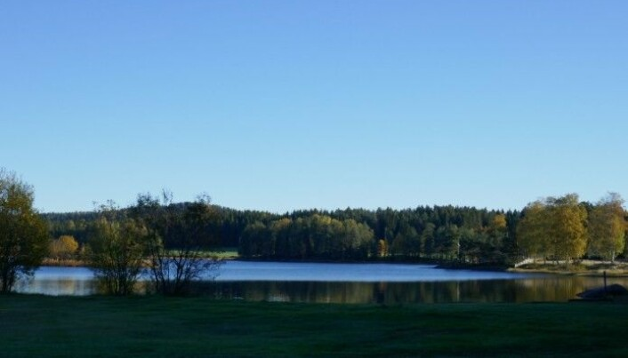 Lundebyvann, Indre Østfold, where Camilla Hagman has done parts of her research.