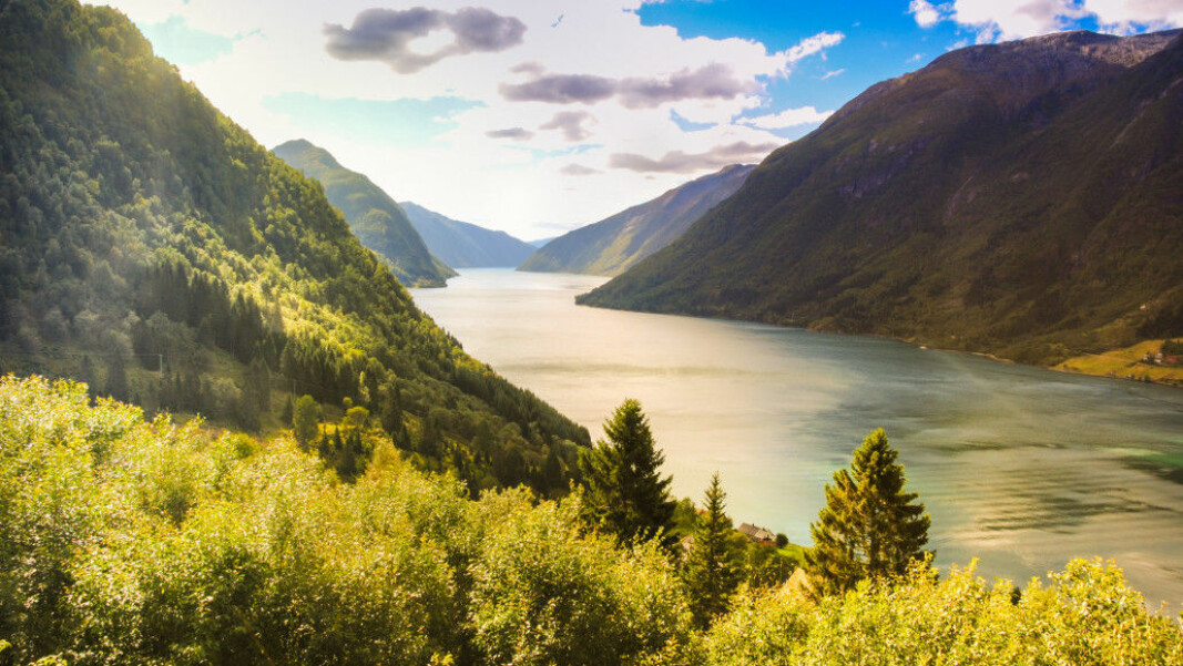The very first ice that reached the ocean during the ice ages probably came from right here in Sognefjorden.