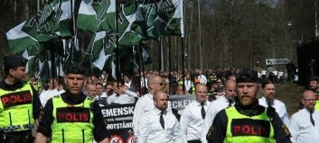 The case against the Nordic Resistance Movement in Finland: an overview and some explanations