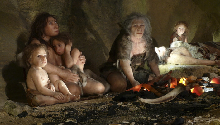 Language evolved alongside the brain in the early human species.