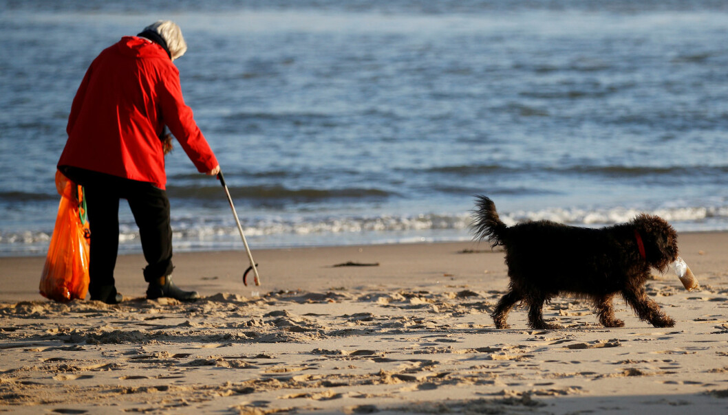 Volunteer Pam Michael collects plastic and other waste as she walks her dog George along New Brighton beach near Liverpool, Britain, November 19, 2018. REUTERS/Phil Noble