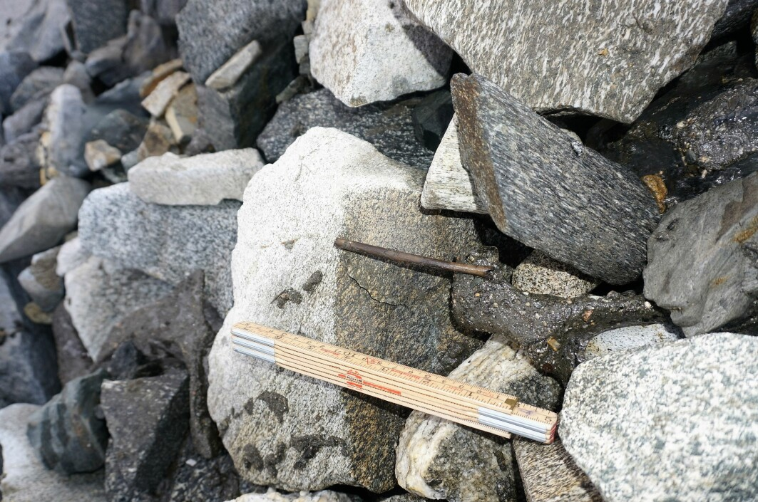 An arrow shaft that is more than 6000 years old, one of the oldest finds from Langfonne