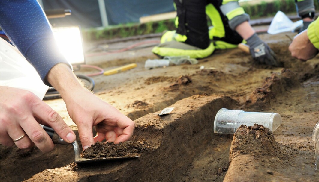 As most of the ship and what was buried with it is more or less decomposed, this has been a dig of picking and sifting through soil as carefully yet efficiently as possible. The plastic cup protects a ship nail found in its original place. By August alone almost a hundred such nails had been found. They are left in place to help make a 3D model of the ship once all the soil is removed.
