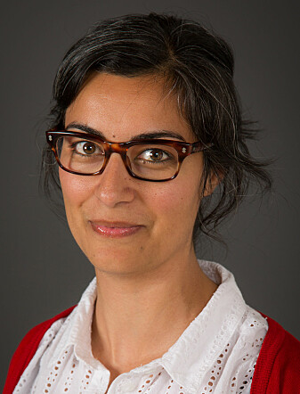 Marjan Nadim is a sociologist at the Norwegian Institute for Social Research and a researcher on gender equality, integration and freedom of expression.