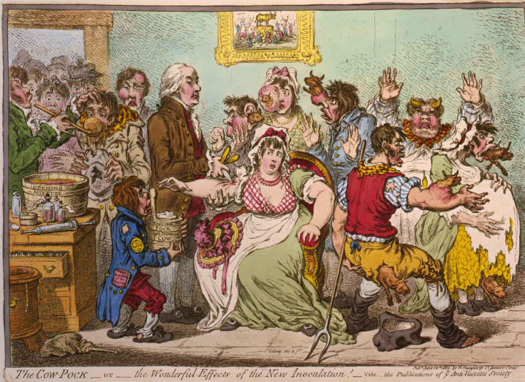 Pus from blisters on cows with smallpox was used in the first modern vaccine. Many people were sceptical, as this 1802 caricature illustrates.