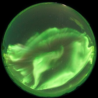 Nightside aurora with dominant green northern lights seen from the Kjell Henriksen Observatory near Longyearbyen. .