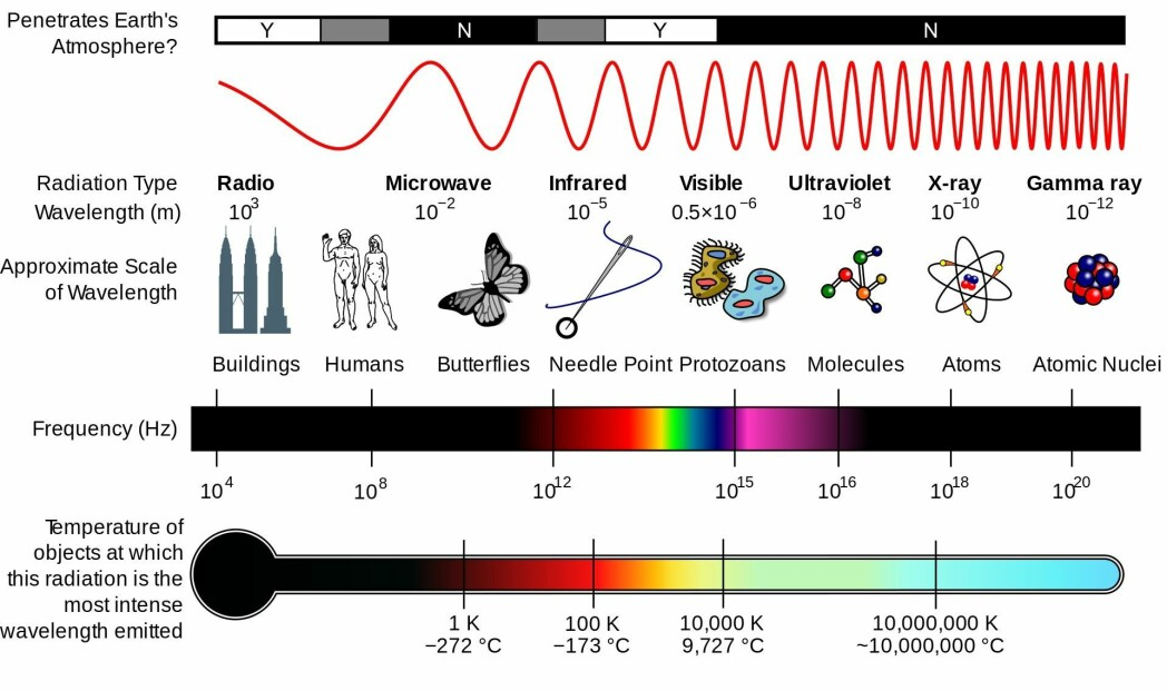The graphic shows the different types of electromagnetic radiation. The objects in the image are approximately the size of the wavelength.