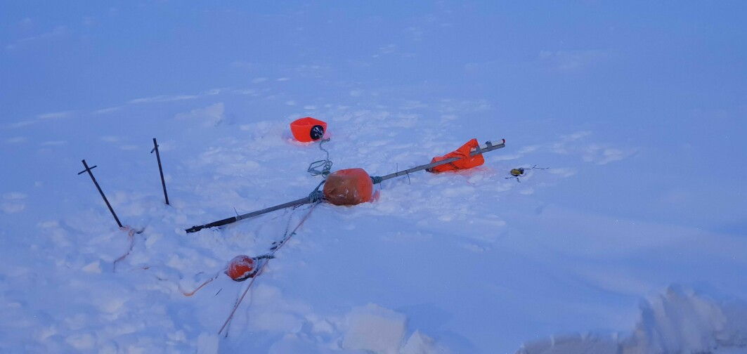 Leftovers from the polar bear visit: The flagpole destroyed, the metal poles (on the left) bent, the AIS on the ice.
