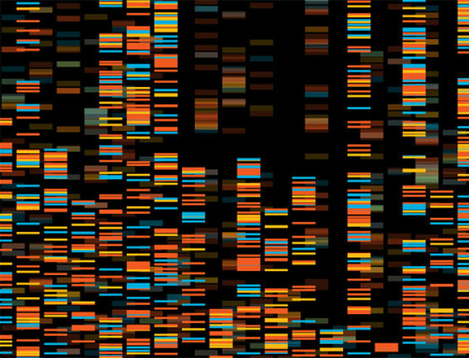Gene sequencing can make it easier for the police to carry out their work. And genealogy has taken on a new dimension.