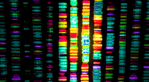 Twenty years of sequencing genes… for better or for worse
