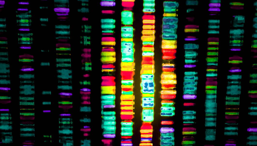 In February 2001, the world was rocked by the news that a large team of scientists from many countries had published the first map of the human genome, our genetic material.