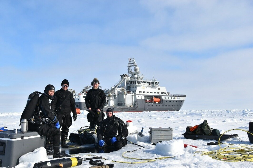 : The dive team, Amalia, Mikko, Haakon and Peter.