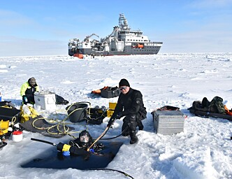 Nansen Legacy Q2 Scientific divers sample ice algae and zooplankton below sea ice