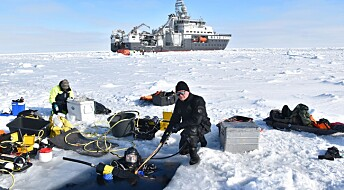 Nansen Legacy Q2 Scientific divers sample ice algae and zooplankton below sea ice
