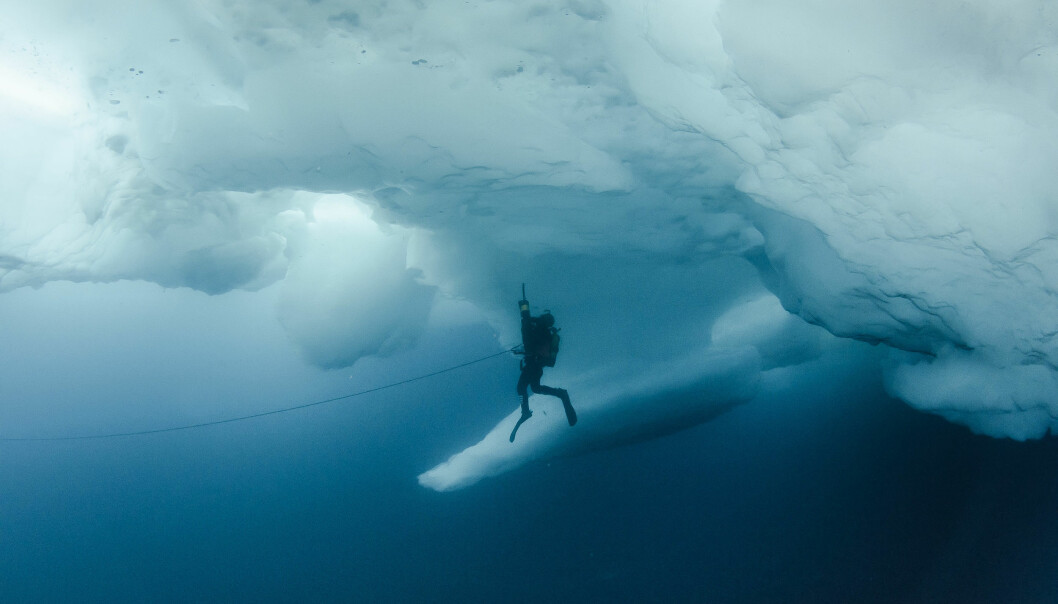 A diver with a suction pump under an ice ridge somewhere in the deep blue Arctic Ocean