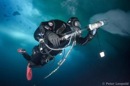 The deep blue Arctic Ocean: A scientific diver's tales of life under water