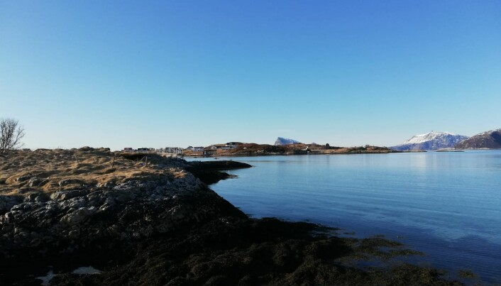 Bright sunny day ideal for marine optical remote sensing. Snow has already melted, and we can see calm and clear waters in Sommaroy.