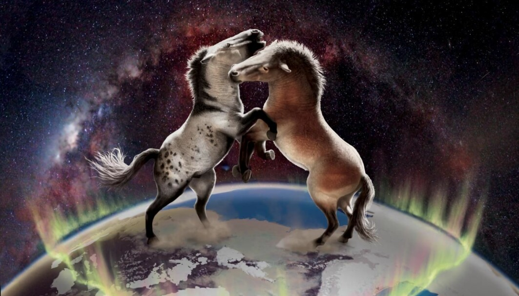 Horses from North America and Europe were not completely isolated from each other over the last one million years.