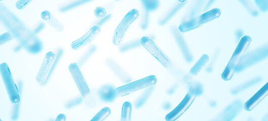 The benefits of probiotics could change the impact of dangerous bacteria in oceans