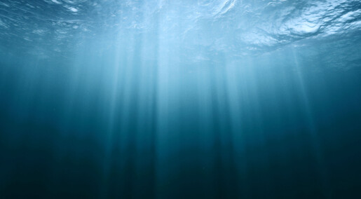 Seabed methane release follows the rhythm of the tides