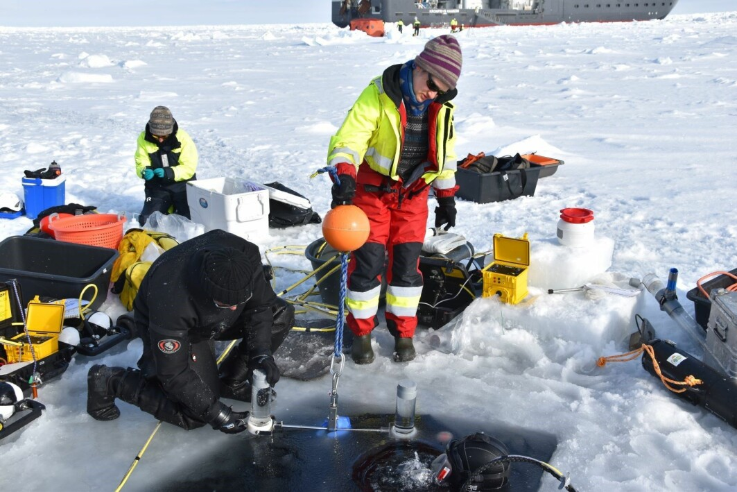 : Divers Peter Leopold and Mikko Vihtakari retrieving sediment traps from below the sea ice for Yasemin Bodur.