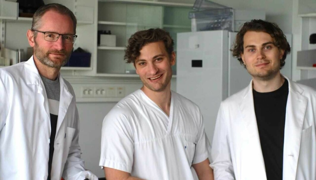 Karl Johan Tronstad, August Hoel and Fredrik Hoel are among the researchers who participated in the new study.