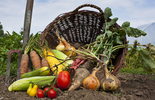 Is organic food healthier than other foods?