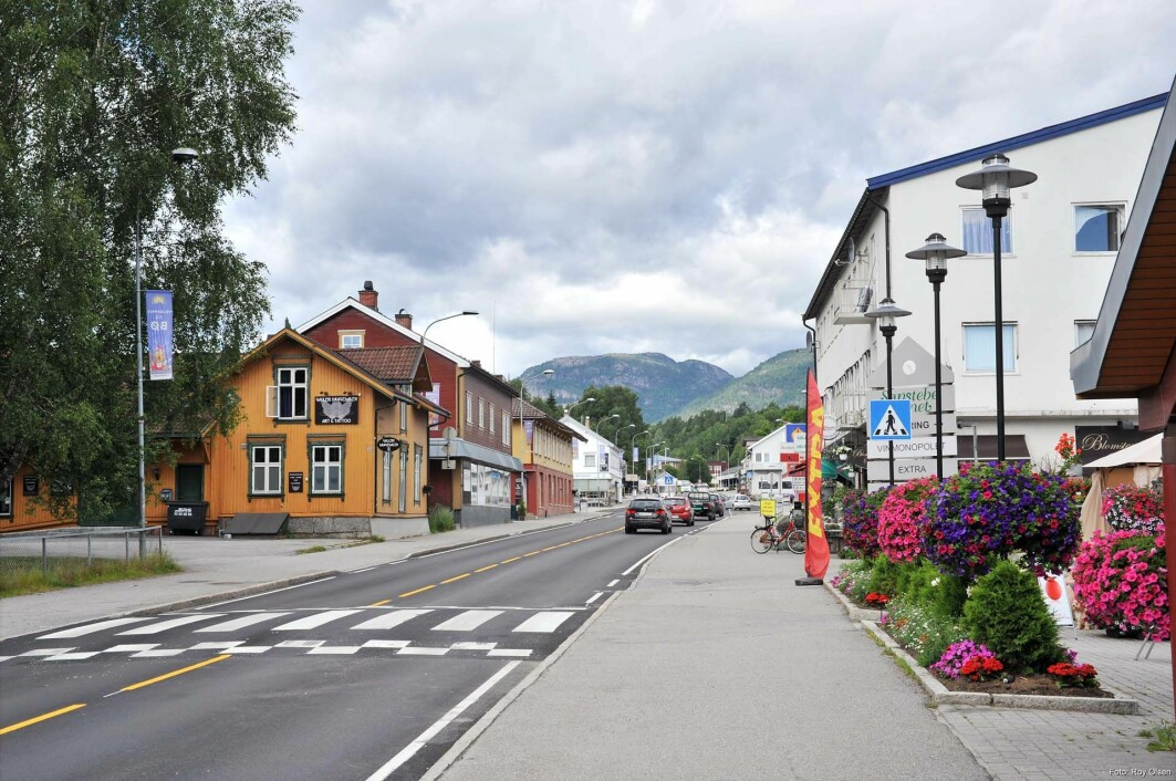 Researchers are trying to figure out what climate measures would work best in villages like this one in Midt-Telemark (formerly Bø municipality).
