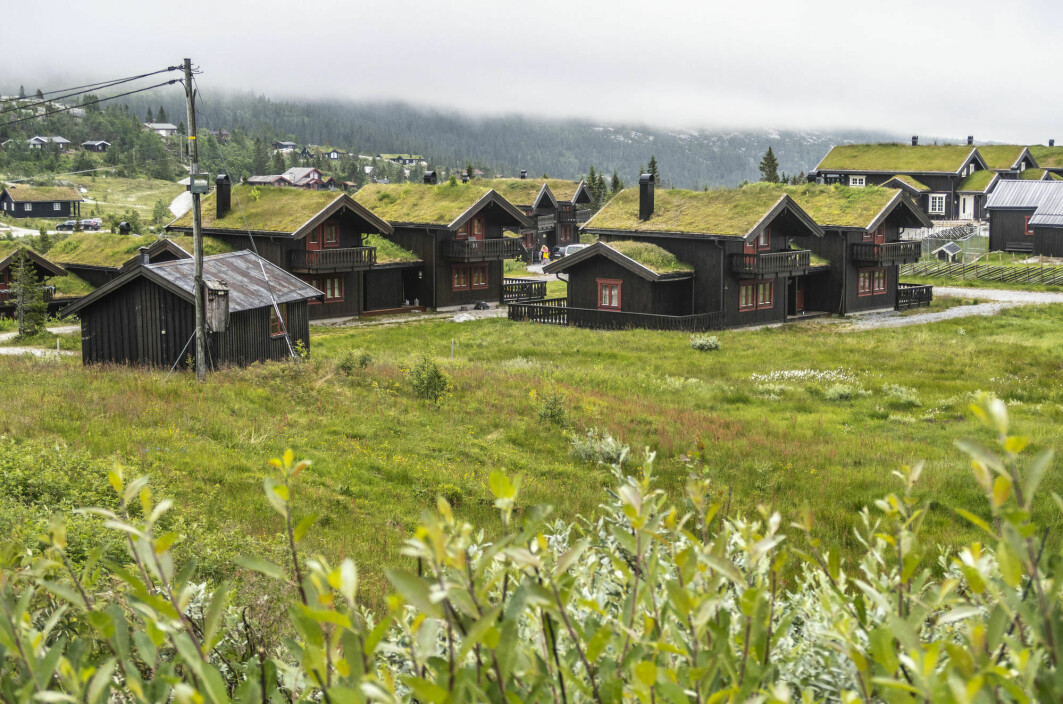 If Norwegians are going to keep building cabins, they'll have to be smaller and closer together, one researcher says. The cabins in these pictures are located in Eggedal, about 135 km northwest of Oslo.