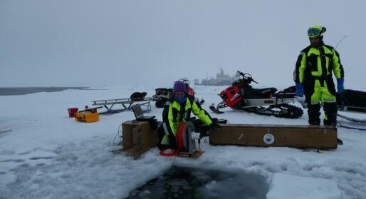 The Arctic Ocean blender system