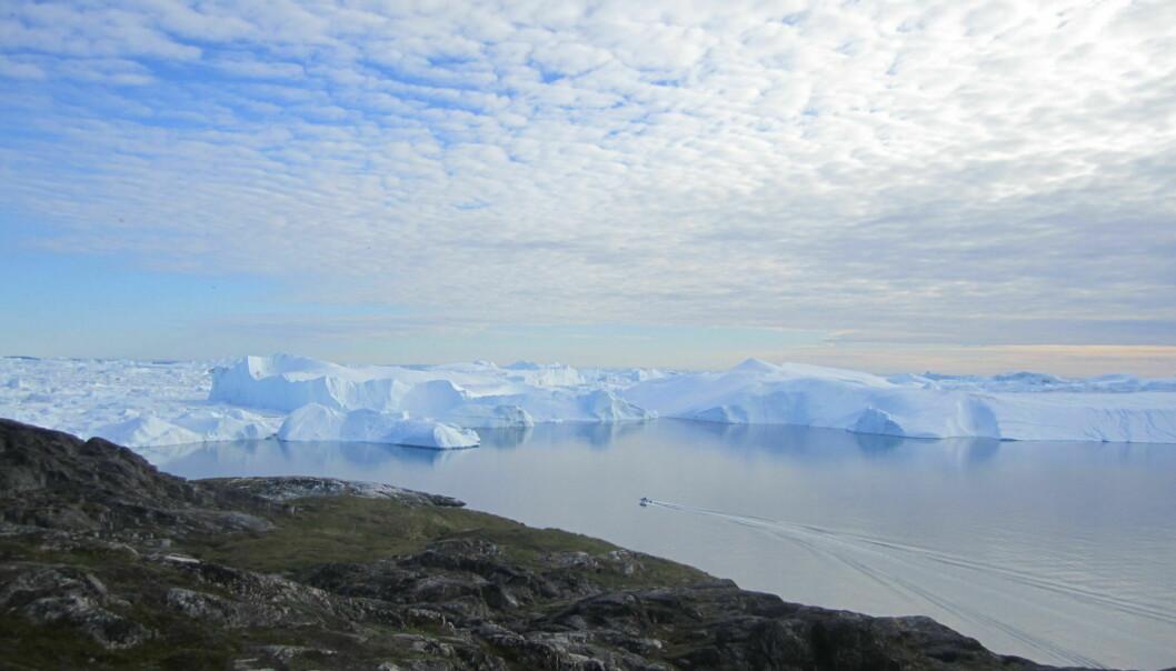 Jakobshavn Glacier in Greenland.