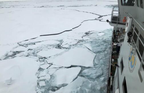 The Transpolar Drift current
