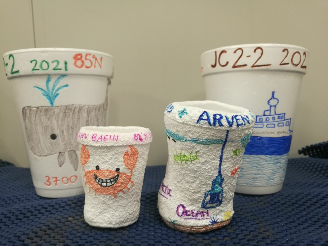 Regular sized foam cups (back) and cups shrunken from being sent to the bottom of the ocean (front).