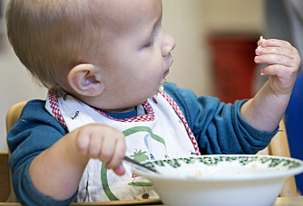 Children who are vegan may have as healthy a diet as kids who eat meat